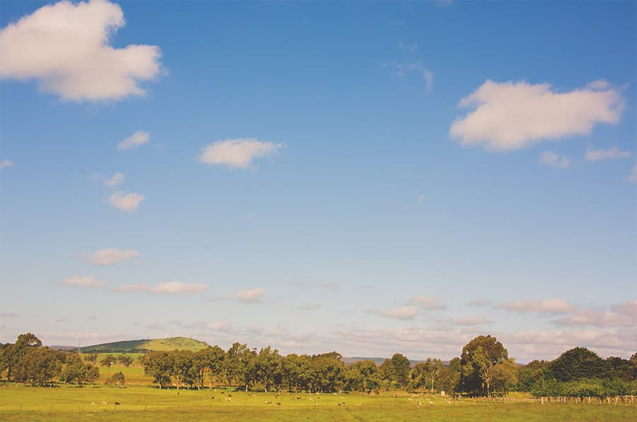 Picturesque landscape of country wedding in Blampied, Victoria