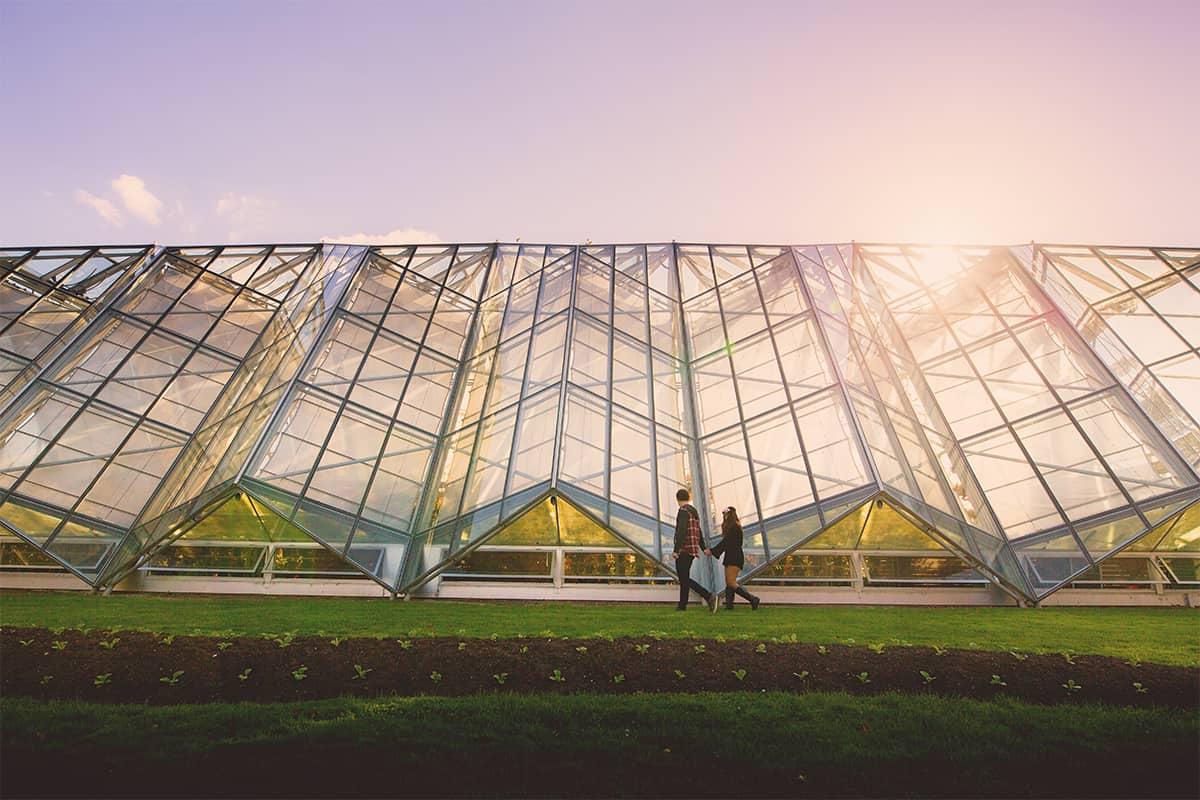 Ballarat Wedding Photography at Botanical Gardens - Robert Clarke Conservatory