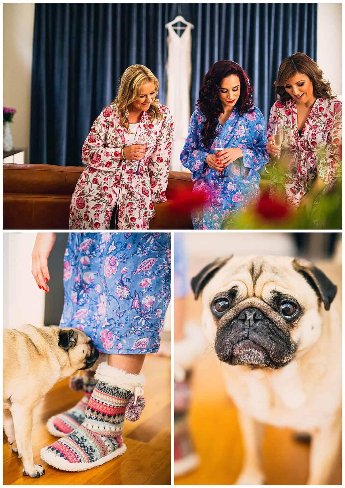 Getting Ready with Wedding puppy, Bugsy
